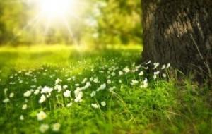 previsioni-meteo-primavera-caldo-1